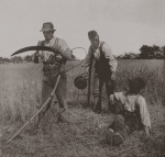 Bauernstand @ wikipedia.org Peter Henry Emerson: In The Barley Harvest