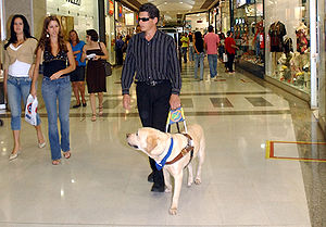WalkingAround-Caoguia2006 @ wikimedia.org © Antonio Cruz/Abr, Agência Brasil